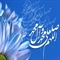 A Glance at the Life of the Holy Prophet of Islam (PBUH)